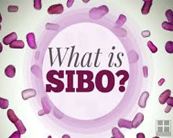 SIBO – Are Bacteria Making Me Bloated?